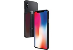 Apple iPhone X 256Gb Space Grey - фото 6141