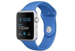 Apple Watch Sport 42 мм Silver Cobalt - фото 5371