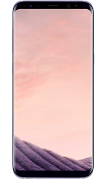 Samsung Galaxy S8 64Gb Grey - фото 5916