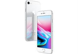 Apple iPhone 8 64Gb Silver - фото 6103