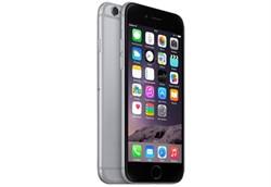 Apple iPhone 6 32Gb Space Grey - фото 6240